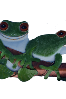 New 2 Green Frogs